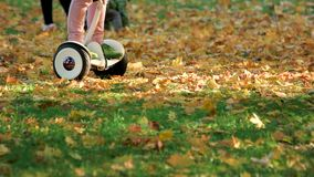Child riding around on electrical board. Fallen autumn oak leaves stock video