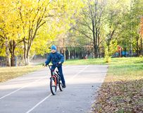 Child riding a bicycle. In autumn park Royalty Free Stock Images