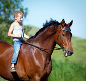 Child riding a big bay horse in field. Stock Photography