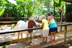 Free Child Riding Horse. Kids Ride Pony Stock Image - 152094581