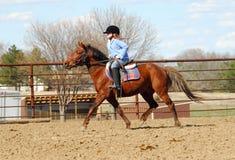 Child riding pony stock images