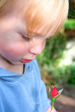Child with rose bud Royalty Free Stock Photo