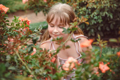 Child with rose flower in spring garden Royalty Free Stock Image