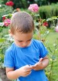 Child in rose garden Stock Image