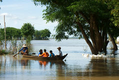 Child, row boat, duck, Vietnamese countryside Stock Image