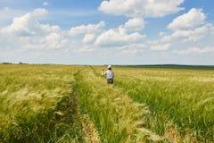 Child run through the wheat field, bright sun, beautiful summer landscape Stock Photo
