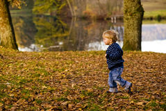 Child running. A child running through a forest Stock Images