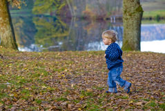 Child running. A child running through a forest Royalty Free Stock Image
