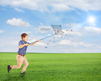 Child running and catching butterflies with net on a field Royalty Free Stock Photography