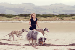 Child running with dogs stock images