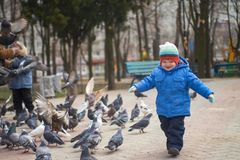 Child running after pigeons. Boy playing with pigeons doves birds in city park.  stock photo
