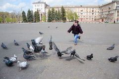 Child running after pigeons. Girl playing with pigeons doves birds in city park Royalty Free Stock Photos
