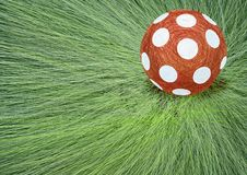 Child's ball on grass Stock Image
