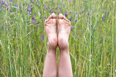 Child's dirty bare feet in wildflowers Royalty Free Stock Photos