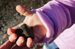 Child's Discovery. A child showing their parent a rock they discovered at the beach Royalty Free Stock Image