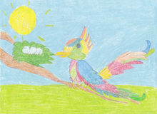 Child`s drawing; Color bird with eggs on the tree`s branch. This child`s painting is about the bird (looks like parrot), that sits on the branch of a tree and Royalty Free Stock Images