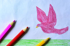 A child`s drawing of a pink dove, grass and sky with colored pencils Stock Photos