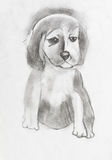 Child's drawing - sad puppy Royalty Free Stock Photography