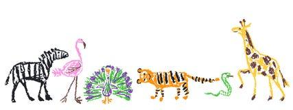 Wild animals set. Crayon like kid`s hand drawn giraffe, tiger, flamingo, snake, peacock, zebra, isolated on white. vector illustration