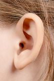 Child's ear Royalty Free Stock Image