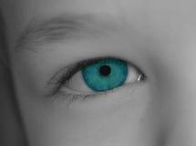 Child's eye. Closeup of child's eye stock image