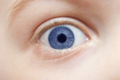 Child's eye - macro Stock Photography