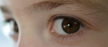 Child's eyes. Child's brown eyes, focus on the left one Royalty Free Stock Photography
