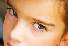 A Child's Eyes. A young girl's eyes, very expressive Royalty Free Stock Photos