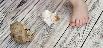 Child`s foot and seashells, white wooden background royalty free stock image