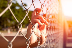Child's hand caught an iron cage in Places of Detention to await Royalty Free Stock Photo