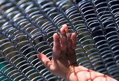 A child's hand on the grid Royalty Free Stock Photo