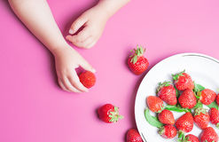 Child`s hand holding strawberry on pink background, plate of strawberries. healthy eating concept. Top view, flat lay Royalty Free Stock Photo