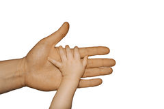 Child`s hand stock photos