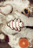 Child's hands in gloves holding gingerbread cookie Stock Images