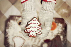 Child's hands in gloves holding gingerbread cookie Stock Photo