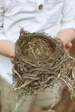 Child`s Hands Holding Fallen Bird`s Nest Royalty Free Stock Images