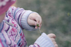 Child's hands Royalty Free Stock Images