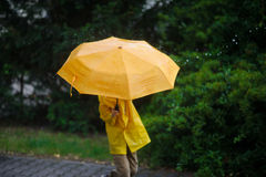 The child's head in bright yellow raincoat is closed by a big umbrella. Royalty Free Stock Photos