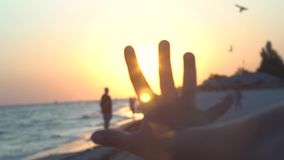 Child`s palm against the sunset on the coast