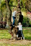 Child's Play. Two children climbing a tree Royalty Free Stock Photo