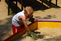 Child's play in the sandbox. Little boy playing in a sandbox shovel Royalty Free Stock Photo