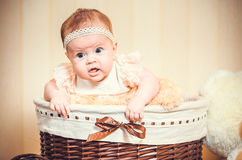 Child's portrait in a basket Stock Image