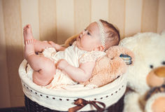 Child's portrait in a basket Royalty Free Stock Photo
