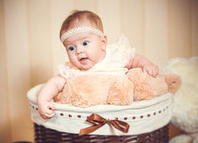 Child's portrait in a basket Stock Photography