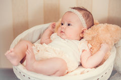 Child's portrait in a basket Royalty Free Stock Photography