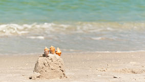 Child`s sand castle. With three shells on an section of a tropical beach in the Gulf of Mexico royalty free stock image