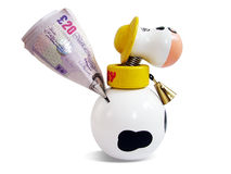 Child's savings. Money going into a child's cow money box Stock Images