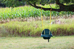 Child's Swing Royalty Free Stock Photos
