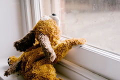 Child's toy looking out the window Royalty Free Stock Images