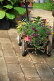 Child's wagon, filled with seasonal flowers Stock Photos